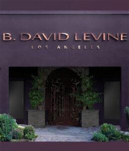 b. david levine
